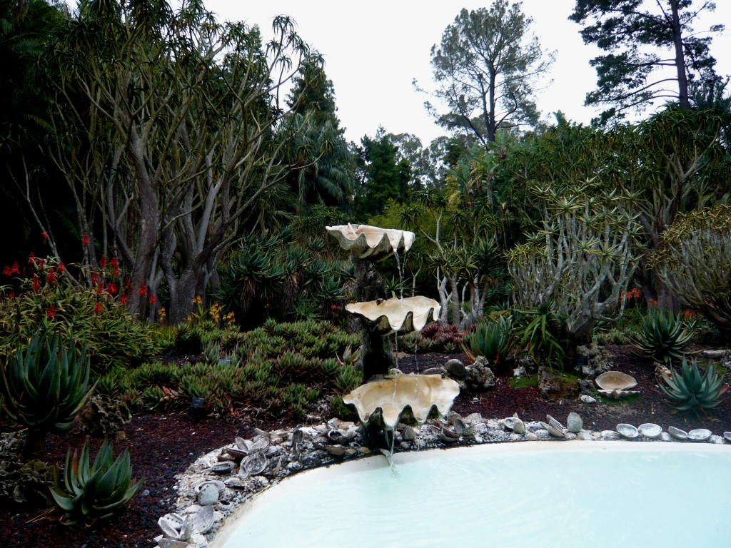 a white reflecting pool, a clamshell fountain, and aloes galore. bliss.