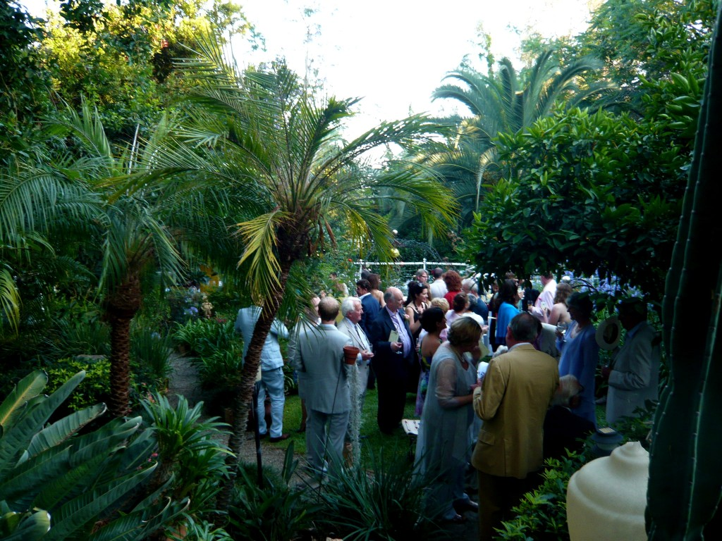cocktails in the lower garden; the festivities begin