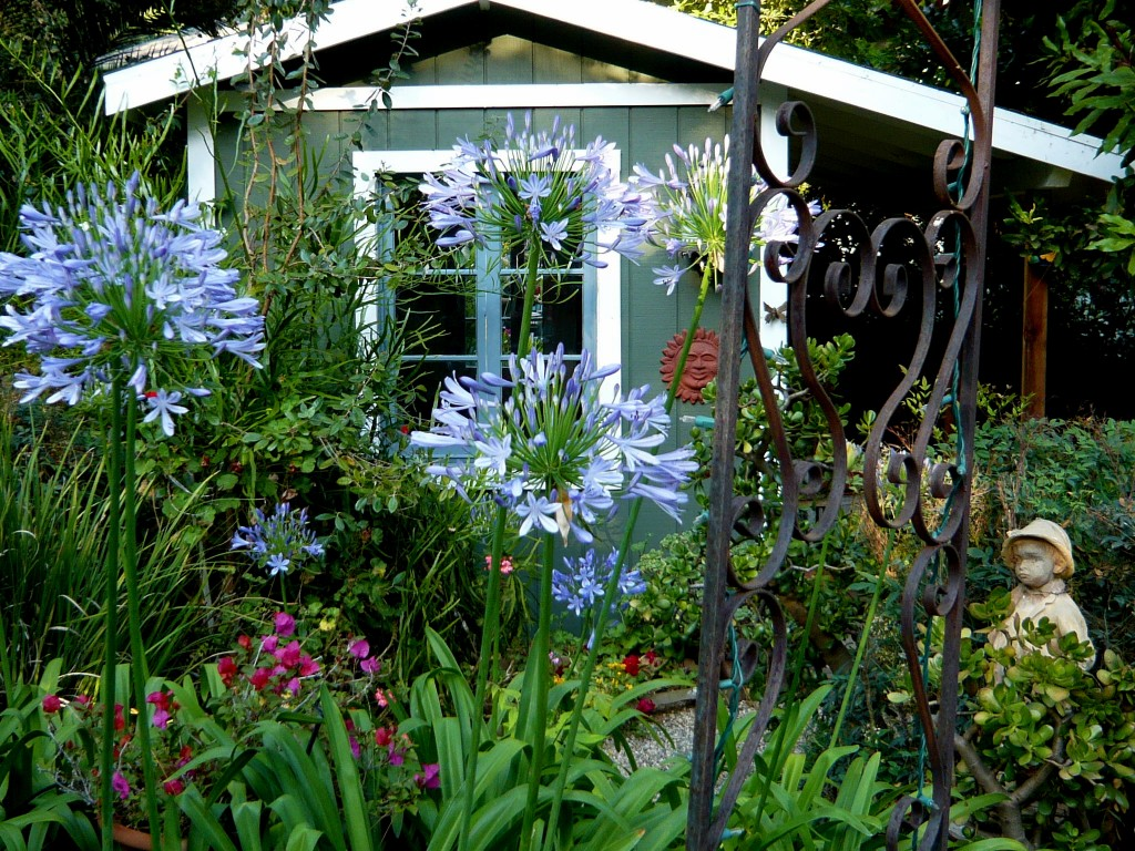a charming shed tucked away among the blooms