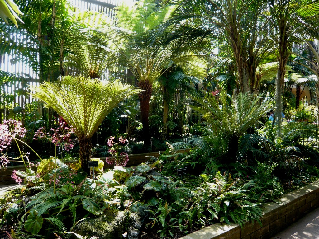 The germinatrix blog archive inspiration a tropical for Tropical landscape