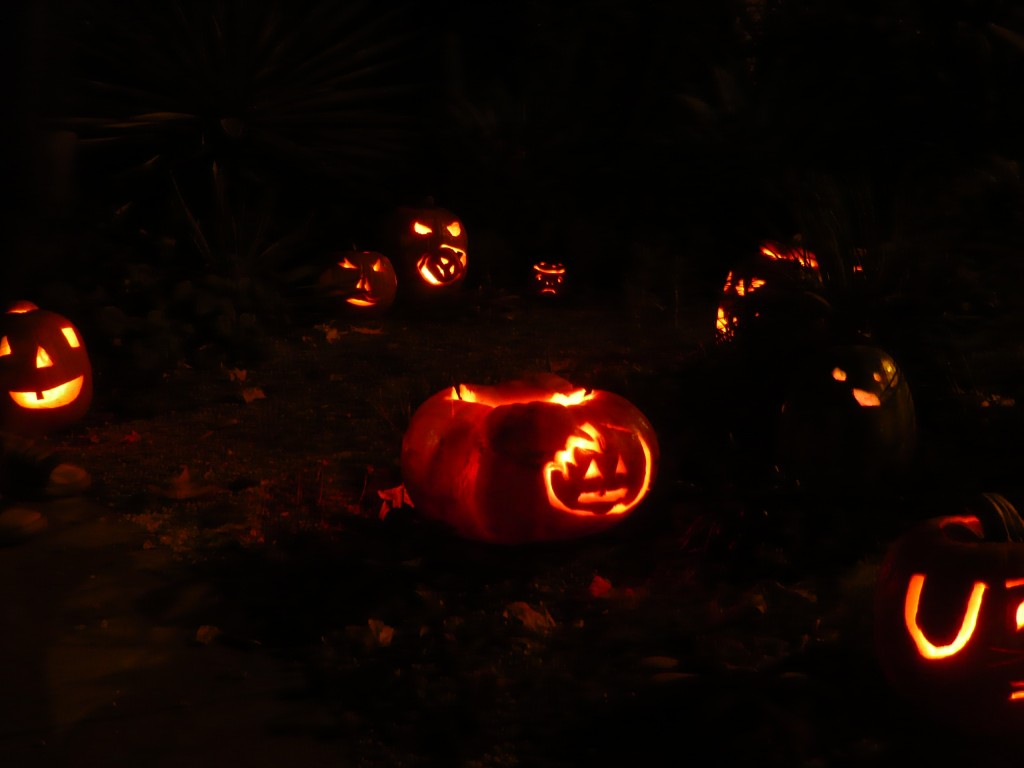 is anything better than a front yard garden all aglow with Halloween spirit?