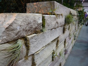 """this subtle 'living wall' was a part of Rich Radford's """"Re-Generation"""""""